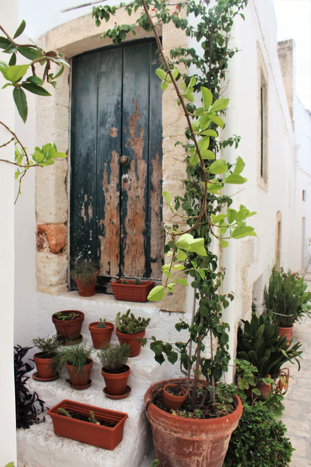 polignano___hipster house