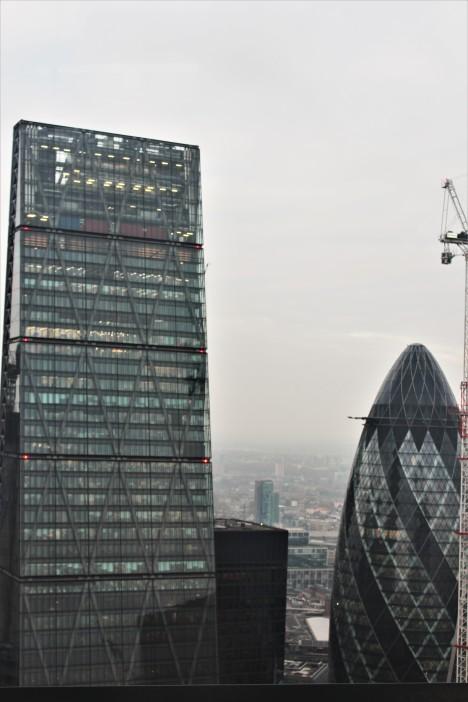 London - Skygarden Views 1