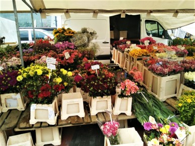 Flower Stand at Saturday's Market